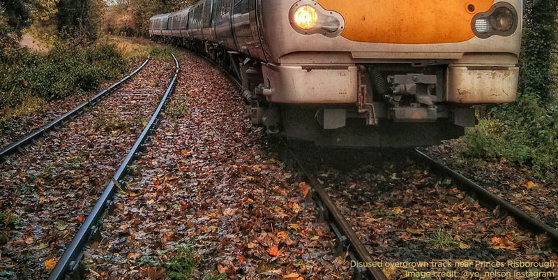 Chiltern Railways Leaf Fall Timetable starts Monday 7th October for customers in Aylesbury