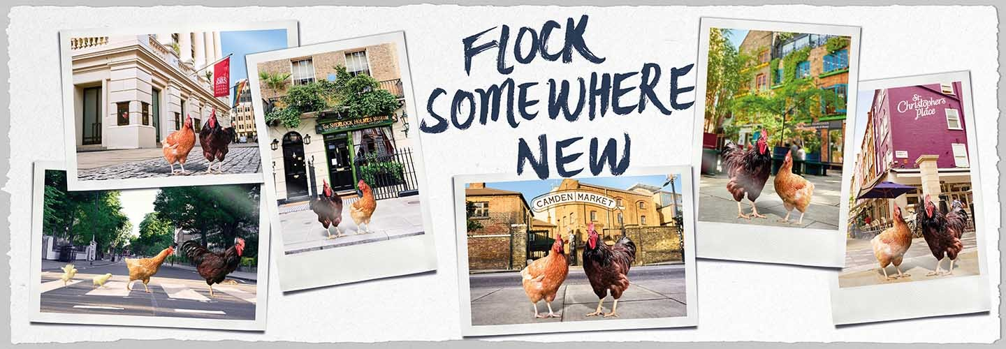 Flock somewhere new this summer with Chiltern Railways