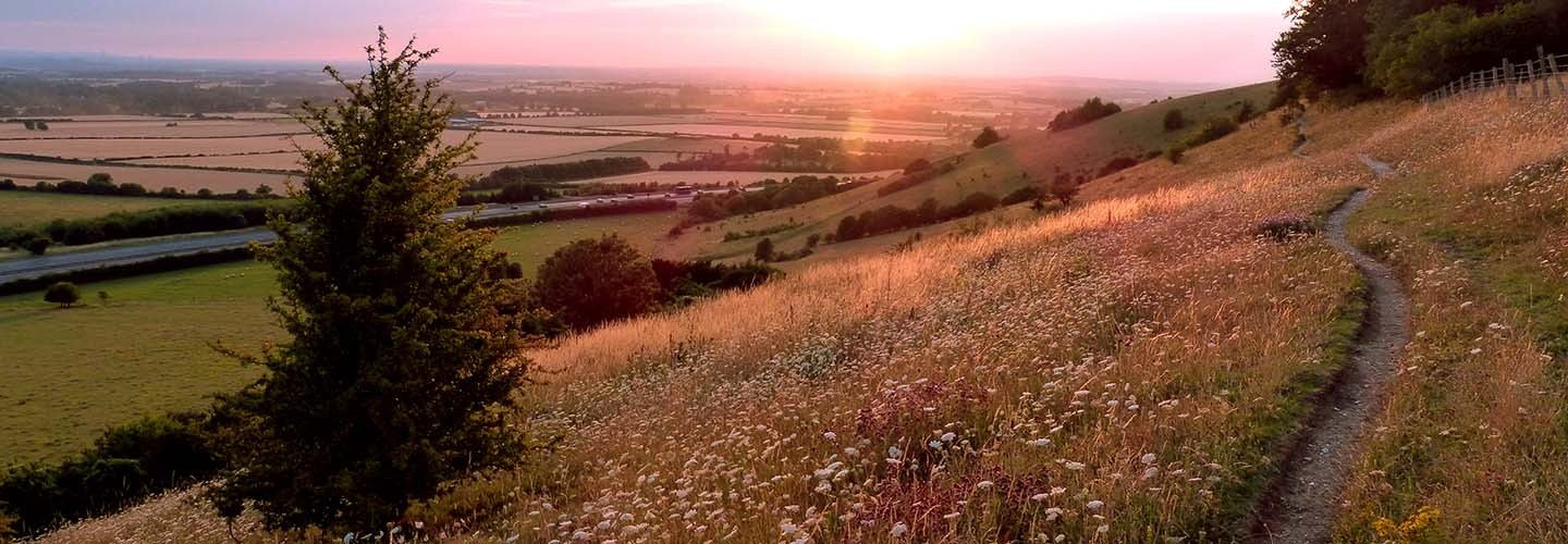 Experience the Chiltern Hills with the Saunderton Circular Walk